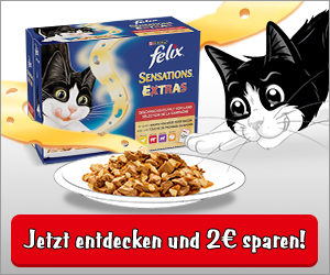 zu den Coupons